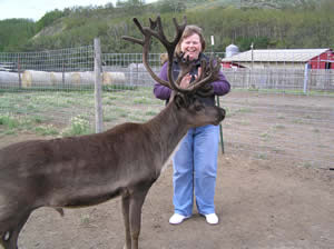 me & a reindeer